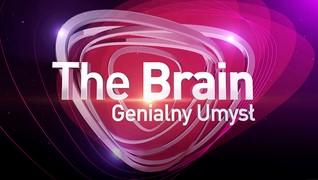 <!--The Brain - genialny umysł-->