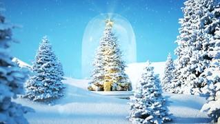 Wesołych Świąt z Polsatem